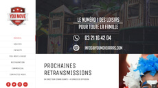 Site Professionnel Wordpress